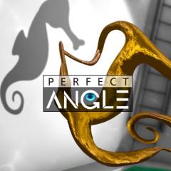 Get Off Perfect Angle For PS In Official Store PSprices UK - Perfect angle