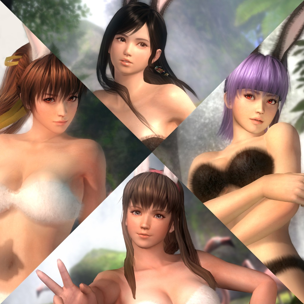 Dead or Alive 5 Costumes - Bunny Swimwear Set
