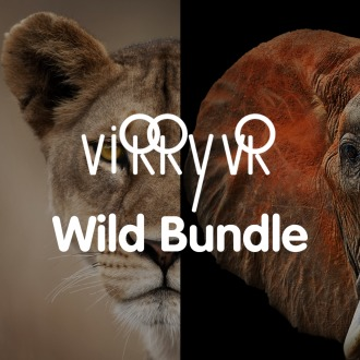 Virry VR: Wild Bundle PS4