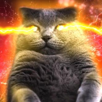 BRIKS 2 Fluffy Laser Cat Dynamic HD Theme PS4