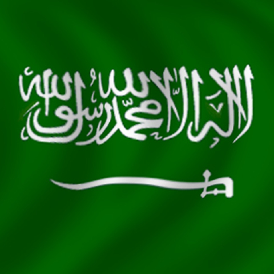 Avatar Saudi Arabia Flag