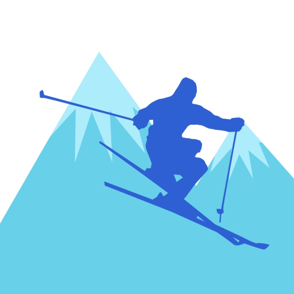 FREESTYLE SKIER AVATAR