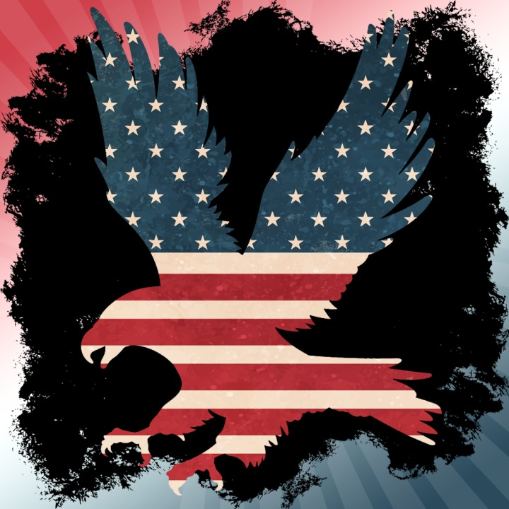 51 Discount On Eagle Silhouette With Vintage Usa Flag Gamer Avatar
