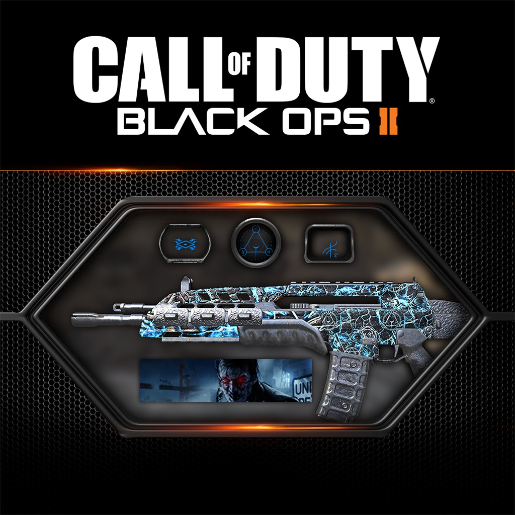 Call of Duty®: Black Ops II Afterlife Pack