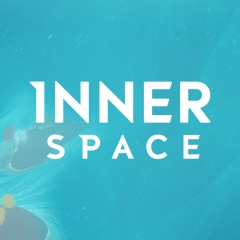 Innerspace - The Art of Flight Theme