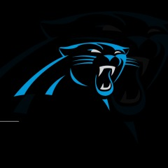 reputable site dbae8 6b7bb NFL: Carolina Panthers Avatar