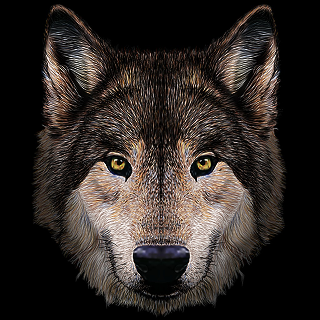 Brown Wolf Avatar