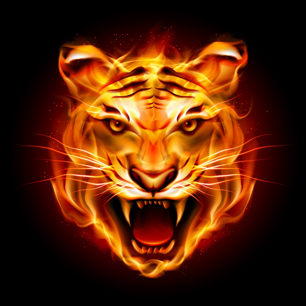 Hell Fire Tiger HiQ Avatar