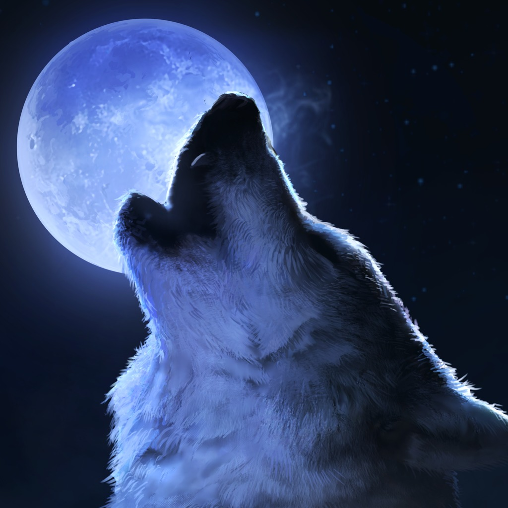 Full Moon Wolf HiQ Avatar