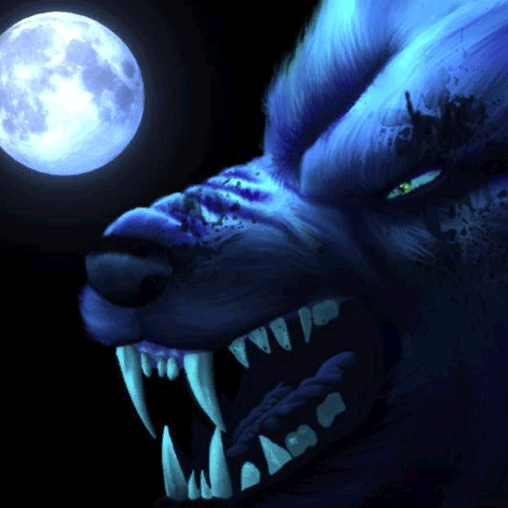 Midnight Wolf Dynamic Theme