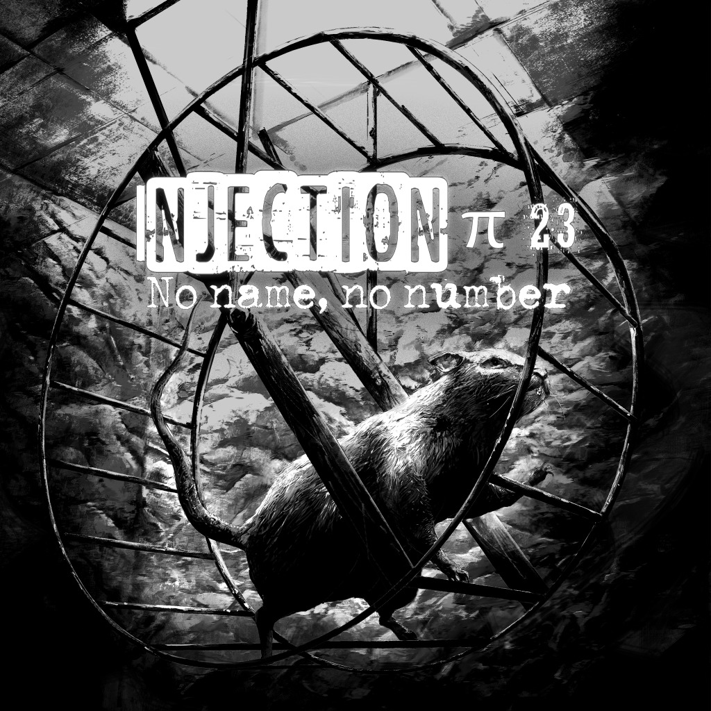 Injection π23 \