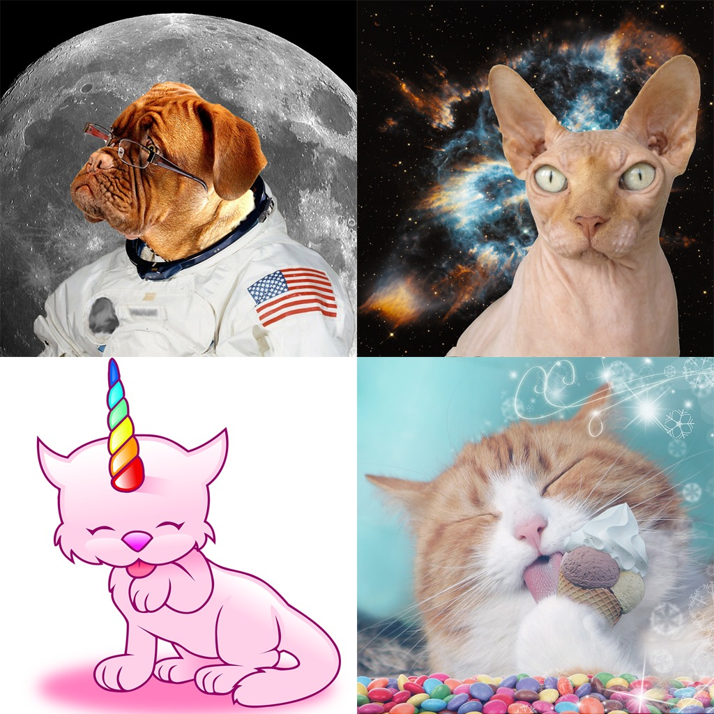Absurd Animals Avatar Bundle