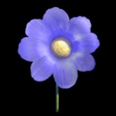 Flower® Blue Flower Avatar 2